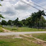 Chính chủ Cần Bán đất diện tích lớn cách MT chính 15m tại Xã Trường Tây Hòa Thành Tây Ninh