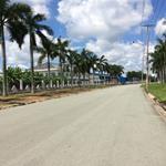 Mở bán lô góc và 10 nền đất nằm ngay trục đường Trần Văn Giàu, đối diện bệnh viện Việt - Nhật.