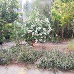 Cho thuê 140m2 đất kinh doanh gần Bến Xe Quận 8 giá 12tr/tháng LH Mr Tùng 0909060884
