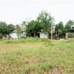Cần bán 200m2 đất ở tại Xóm Thọ Sơn Xã Nghi Vạn Huyện Nghi Lộc Nghệ An Lh Ms Xuân