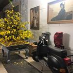 Bán nhà biệt thự Phổ Quang, P2, Q. Tân Bình. DT: 14x19m, 3 lầu đẹp, giá bán 49 tỷ TL