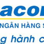 Sacombank Hỗ Trợ Phát Mãi 29 Nền Đất Và 8 Lô Góc Khu Vực - Bình Tân - Bình Chánh - TP.HCM