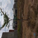 Mở bán Siêu dự án mới ĐẤT NAM LUXURY, có SHR, KV Bình Chánh