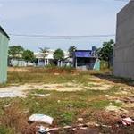 Xuất cảnh gấp, nhượng gấp tài sản gồm: đất 800m2(32x25m),  24 phòng trọ giá 520tr/nền