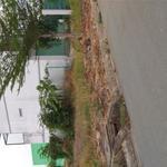 Bán đất KV Bình Chánh, Gần Cầu Bà lát, đất thổ cư 100%, SHR