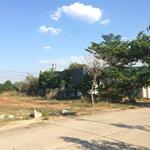 Cô Chín cần sang gấp lô đất thổ cư gần ngay trường đại học Thủ Dầu Một giá chỉ 520 triệu.