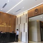 Chính chủ cho thuê căn hộ cao cấp full nội thất khu biệt thự Trần Thái, Phước Kiển, Nhà Bè