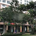 Cho thuê căn hộ officetel Golden King Ngay trung tâm Q7 giá từ 12tr/tháng LH Ms Quyên