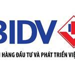 Ngân hàng BIDV thanh lý 40 nền đất thổ cư và 5 lô góc khu vực Bình Chánh TPHCM, SHR
