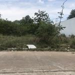Về QUÊ định cư ko ai trông coi nên bán  lại 300m2 đất giá 700 triệu nằm gần trường Đại Học QT