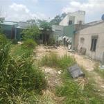 Gia đình kẹt tiền bán lô đất mặt tiền đương thanh niên,dt 500m2 giá 3 ty,binh chanh,,.