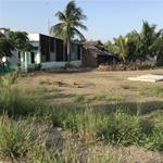 Kẹt tiền cần bán lô đất gần chùa Phật Cô Đơn, giá 860tr/100m2, sổ hồng riêng,Bình Chánh