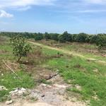 Chính chủ bán lô đất 21.556m2 tại xã Bình Châu. Giá 400.000đ/m2.
