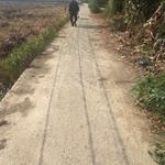 Bán gấp lô đất xã An NHựt Tân, Tân Trụ, Long An, 5x50m, giá 450tr. LH chính chủ