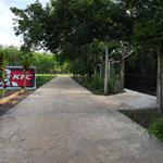 Chơn Thành đã trở thành tâm điểm cho khách hàng đầu tư.