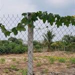 Cho thuê 2 thửa đất 950m2 hướng Chợ Bình Điền tại Đa Phước Bình Chánh LH Mr Khanh