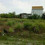 Cần bán miếng đất thổ cư dt 2300m2,mặt tiền đường lê đình chi giá 9.5 tỷ,bình chánh