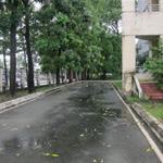 Mặt Bằng cho thuê!Mặt tiền đường CMT8 Và 30/4, P. Phú Thọ, TP. Thủ Dầu Một, Bình Dương.