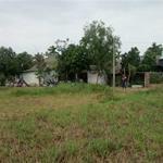 Cần vốn làm ăn bán nhanh lô đất 114m2, Phan Văn Hớn, Hóc Môn 1tỷ350. Lh 0906766517
