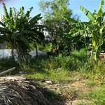 DỰ ÁN ĐẤT NỀN GIÁ CỰC RẺ – NẰM NGAY TRUNG TÂM KHU DÂN CƯ MỸ PHƯỚC 1