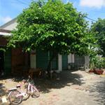 Bán gấp đất xã Bình Chánh, chia tài sản. Gía 8tr/m2. Cần LH 0902.978.127
