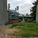 Bán đất Bình Chánh, Tỉnh Lộ 10, 1.4ty/125m2, SHR, gần trường, chợ, thích hợp đầu tư