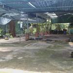 Cho thuê mặt bằng làm quán ăn , cafe sân vườn , kho , xưởng tại Lê Thị Hà Hóc Môn LH : MS HÀ