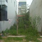 Cần bán 2 lô đất thổ cư 100% sổ hồng riêng đường vườn thơm, Bình Chánh