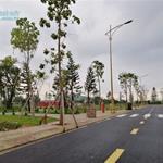 Bán nhanh lô đất MT đường Trần Văn Giàu - Bình Chánh 100m2 giá 1.1 tỷ SHR