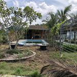 Cho thuê nhà vườn xã phước hiệp củ chi rộng khoảng 10.000m2 giá 10tr/tháng LH :A DUY