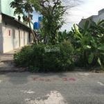 Cần tiền bán lô đất mặt tiền tỉnh lộ 10, gần trường Đại học Quốc Tế Tân Tạo, 125m2. SHR