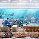 Golden Sea 7sao View Biển An Bàng, cam kết thuê lại 10%/năm, trả Trước 3 năm lợi nhuận.