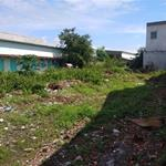 Bán Đất khu dân cư tân đức,đường nhựa 16m,DT 125m2,Giá 1.2 tỷ,đức hòa long an