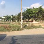 Bán Gấp Mảnh Đất 140m2 Ngay Láng Le Bàu Cò Xã Lê Minh Xuân Huyện Bình Chánh Giá Rẻ 1.3 Tỷ.