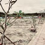ĐẤT KHU CÔNG NGHIỆP MINH HƯNG -HÀN QUỐC - CHƠN THÀNH GIÁ ĐẦU TƯ SIÊU RẺ CHỈ 239TR