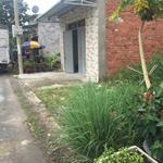 Đất đường Trần Đại Nghĩa Huyện Bình Chánh 900tr
