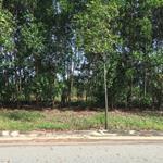 Bán 300m2 đất thổ cư kế bên trường Đại Học Việt Đức, giá chỉ 680 triệu