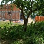 Đầu tư nuôi tôm cần tiền bán gấp 300m2 đất nền thổ cư, gần chợ, bệnh viện Hòa Hảo