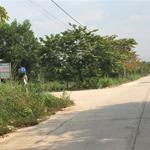 Bán gấp đất thổ cư đối diện KCN Kumho, 300m2 giá chỉ 680 triệu nền đối diện chợ dân sinh