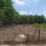 bán đất nông nghệp nhơn trạch đồng nai 2,9 triệu/m2