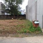 Cần bán đất thổ cư Bình Chánh diện tích 850m2 sổ hồng đường Thanh Niên giá 1,3 tỷ gần trường học