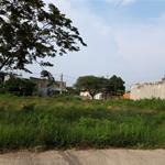Do thiếu vốn kinh doanh nên cần bán gấp một thửa đất 300m2 ở gần công Mỹ Phước 3