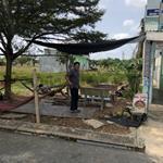Cần tiền bán gấp lô đất mặt tiền đường Láng Le Bàu Cò huyện Bình Chánh SHR, 980tr/125m2.