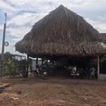 Cần Bán Gấp Lô Đất: Xã Bàu Năng, Huyện Dương Minh Châu, Tây Ninh