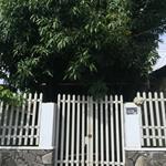 Cho thuê nhà nguyên căn 5x33 hẻm 5m Đường HL80 Vĩnh Lộc A Bình Chánh giá 8tr/tháng