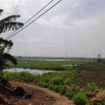 Bán gấp 7389m2 đất Bàu Hàm Trảng Bom SHR 2mt đường rất đẹp