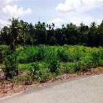 Cần bán 2 lô đất mặt tiền Bình Chánh - ( 1 tỷ 5 / 252m2 ) - SHR. LH: 0909.887.249