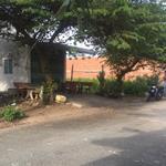 Bán căn nhà cấp 4 với lô đất sát bên,DT 200m2,giá 3.1 tỷ,đường trần đại nghĩa,huyện bình chánh