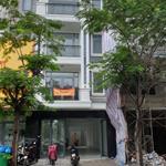 CHO THUÊ NHÀ NGUYÊN CĂN MẶT TIỂN! :Mặt tiền đường chính The Seasons Lái Thiêu,Thuận An,Bình Dương