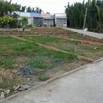 Cần bán gấp lô đất 100m2 ngay đường Trần Văn Giàu, SHR, mặt tiền, gần chợ